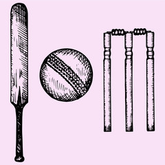 Set of equipment for cricket: bat, ball, wicket, doodle style, sketch illustration, hand drawn, vector