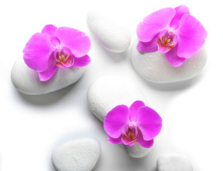 White spa stones and orchids isolated on white