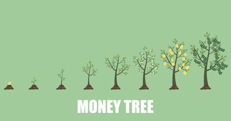 Growing Money Tree in progress