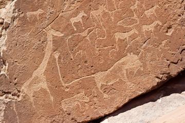 Namibia Afrika Twyfelfontain Epuwo