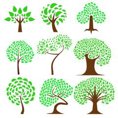 Set of Tree design ,natural vector illustration