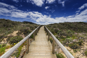 Weg durch die Dünenlandschaft, Portugal