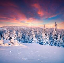 Papiers peints Grenat Colorful winter sunset in the Carpathian mountains