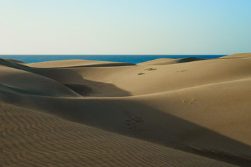 Wavy dunes in desert or beach under blue sky /  Wavy sandy dunes in a wide desert at southbeach of gran canaria