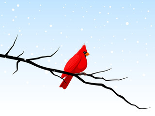 Vector illustration of a red cardinal perched on a branch in a snowy winter scene.
