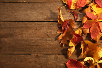 Yellow and brown autumn leaves on wooden background