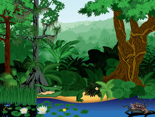 Vector Illustration Tropical jungle lake with crocodile