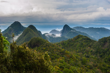 Langkawi - Inselparadis der Adler im Regenwald