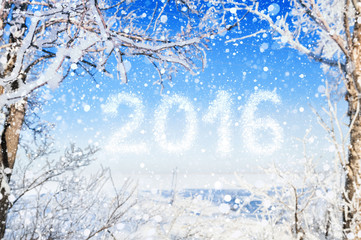 Inscription of the new year 2016. Winter forest background