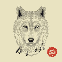 Vector sketch of a wolf's face. Wolf head, front view. Hand drawn illustration