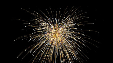 fireworks explosion sparkle