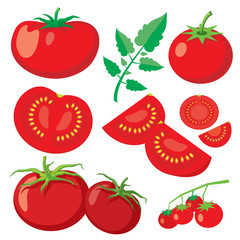 Wall Mural - Vector fresh tomatoes in flat style
