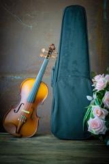 vintage violin resting against an old steel background