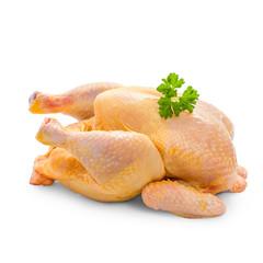 Corn-fed chicken on white background