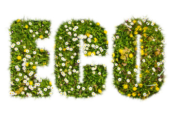 ECO - Text with natural grass texture
