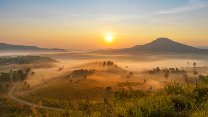 The Beautiful morning misty