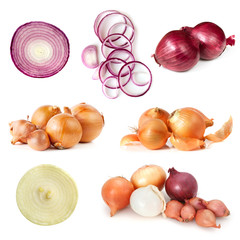 Onions Collection Isolated on White