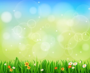 Background Green Grass with butterfly And Sunburst