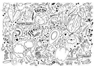 Vegetables and fruits Set hand drawn doodle