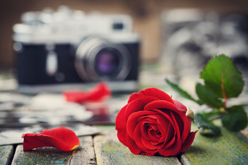 Red rose flower and vintage camera on wooden board, photography creative concept