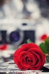 Red rose and vintage camera on wooden board, photography creative concept