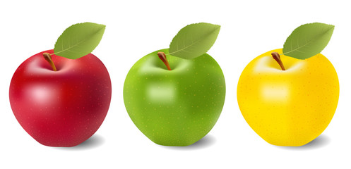 The set of red,green and yellow apples on white background, vector illustration