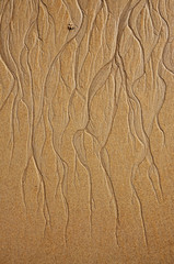 Figure in the form of curved lines in the sand on the beach, make waves