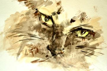 Watercolor sketch of a cat.