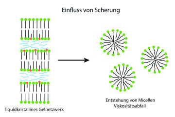 Scheueinwirkung auf ein liquidkristallines Gelnetzwerk einer OW Emulsion