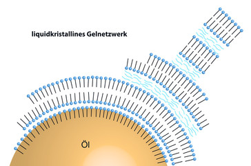 liquidkristallines Gelnetzwerk in OW Emulsionen
