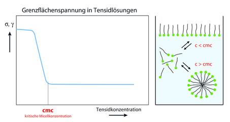 Grenzflächenspannung in Tensidlösungen