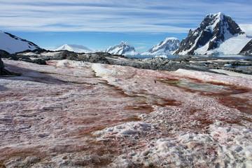 Krajobraz wyspy Petermann na Antarktydzie