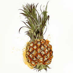 Vector background in tropical style with pineapple