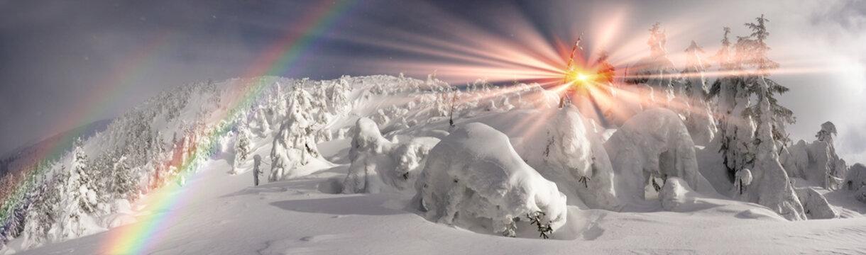 Severe winter landscape