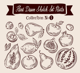 Hand drawn vector doodle set fruits. Vector illustration
