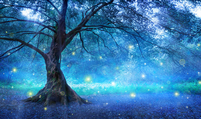 Fairy Tree In Mystic Forest