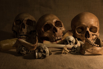 still life with skulls and bones, art and dark concept