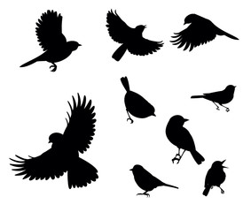silhouettes of birds flying and sitting on a white background