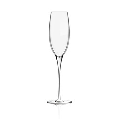 Vector isolated Champagne Glass