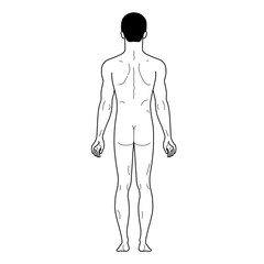 Fashion man outlined linear template full length figure silhouet
