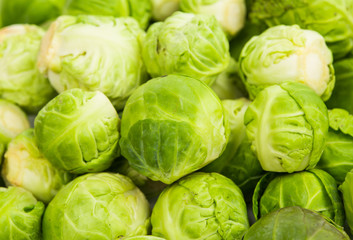 fresh green Brussel Sprouts.