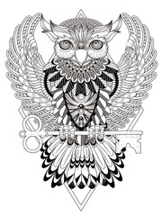mysterious owl coloring page