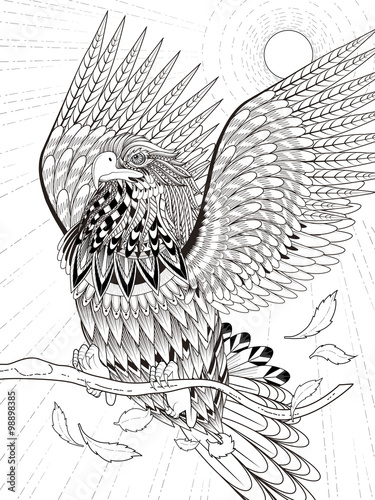 Quot Flying Eagle Coloring Page Quot Stock Image And Royalty Free