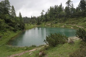 Schöner Teich
