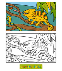 Coloring book for children (chameleon)
