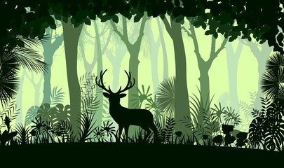 Forest background with wild deer of trees