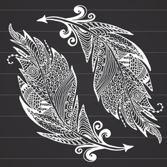 Ornamental hand drawn sketch of feathers in zentangle style. vector illustration with ornament, on chalkboard