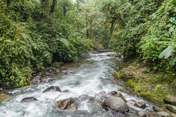 River in Nambillo Cloud Forest Reserve near Mindo, Ecuador.