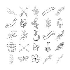 Elegant design elements set.
