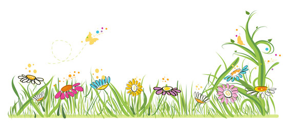 Colorful daisy field in spring time vector illustration